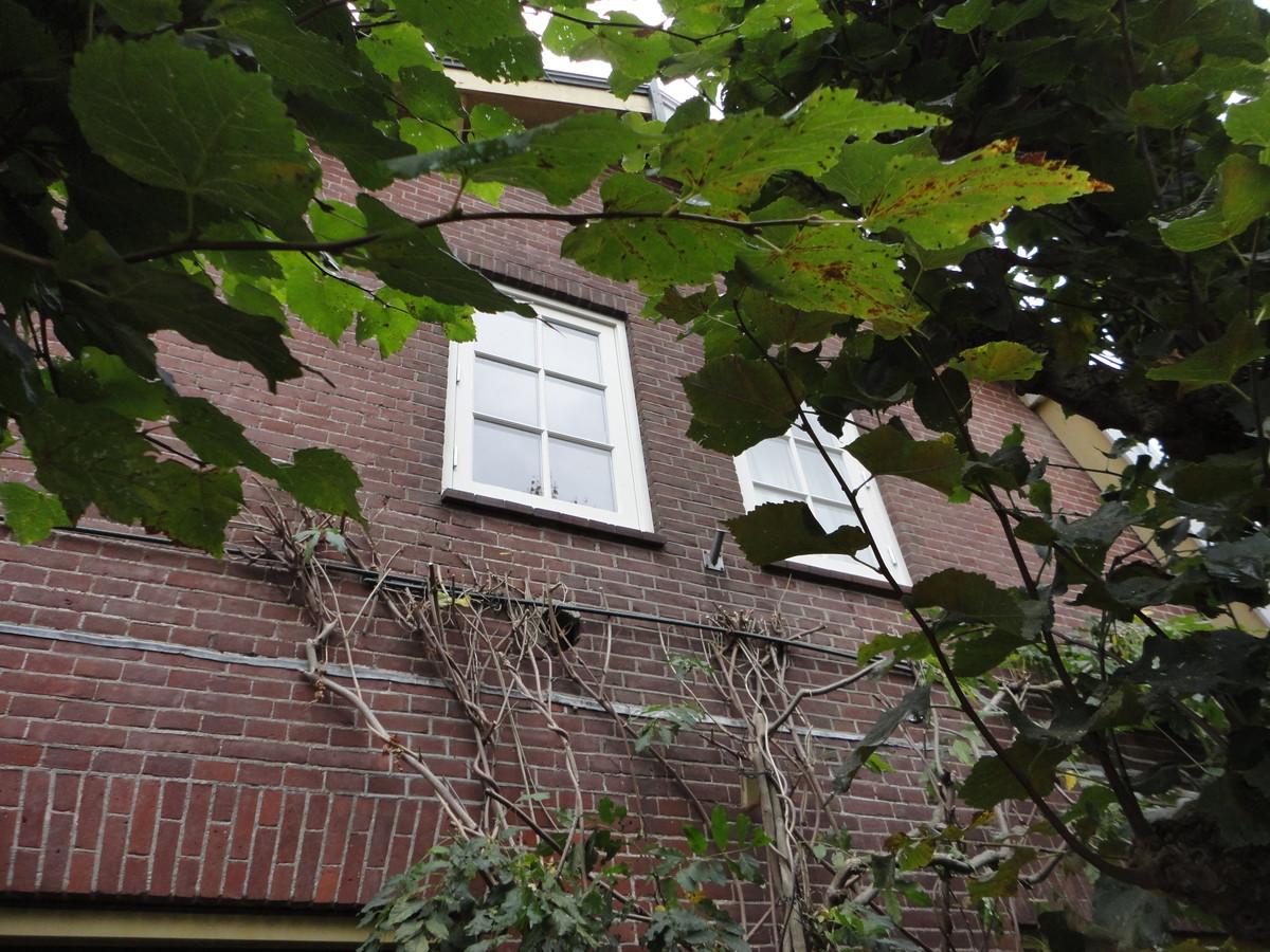 Kozijnen met ramen en roedeverdeling Koningin Wilhelminastraat Huizen